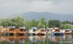 """Dal Lake"" in Srinagar, Kashmir (INDIA) – BY LIFETHOUGHTSCAMERA. A 21 day jeep journey from Bengaluru to Leh .. .. .. .. .. .. .. .. .. .. .. .. .. .. .. .. .. .. .. .. .. .. .. .. #LifeThoughtsCamera #INDIA #travel #outing #favorite #cool #best #love #like #places #getaways #trip #weekend #trip #tour #sightseeing #Blr2Leh #DalLake #Srinagar #Kashmir #TravelBlogger #TravelBlog #IndianBlog #IndianTravelblogger #JammuandKashmir @NGTIndia"