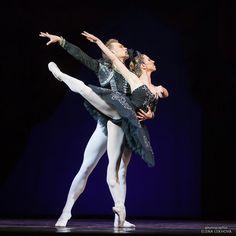 "<< Еlena Кabanova and Ilja Borodulin (Yekaterinburg Opera and Ballet Theatre) # ""Swan Lake"" (fragment) # 2016 Yekaterinburg Ballet Summer Gala (June 3, 2016) # Photo © Elena Lekhova>>"
