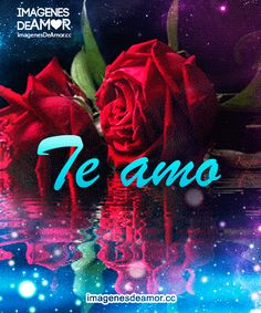 Neon Signs, Gifs, Animal, Space, Heart, Beautiful Roses, I Like You, Te Amo, Romantic Quotes