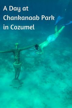 Chankanaab National Park was the perfect place to spend a day in Cozumel, Mexico. It has everything--beach, sun, snorkeling, snacks, and beverages.