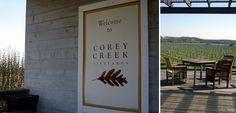 Corey Creek Vineyard