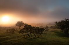 Burning by Lee Acaster on 500px