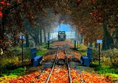 Seen, Budapest Hungary, Homeland, Railroad Tracks, Beautiful Places, Road Trip, Places To Visit, Explore, Landscape