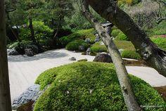 Karesansui Garden in Meigetsuin, Kamakura