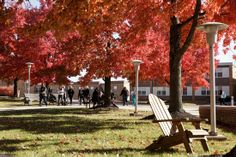 #Fall is the perfect time to visit #Alvernia! The leaves turn a beautiful color and classes are in session. Join us for one of our fall visits! http://www.alvernia.edu/admissions/undergraduate/visit/index.html
