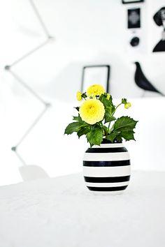 black + white + yellow +   green