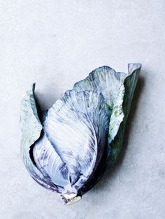 ZsaZsa Bellagio – Like No Other: It's BLUE-tiful.