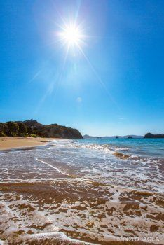 Neuseeland (Nordinsel) - Mercury Bay, Hahei