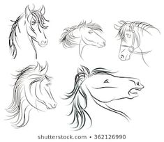 Ähnliche Bilder, Stockfotos und Vektorgrafiken von Vector silhouette of a horse's head - 645837871 | Shutterstock Horse Head Drawing, Horse Face, Illustration, Stock Foto, Silhouette, Horses, Drawings, Image, Collection