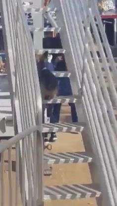 Somebody loves the slide - Welpen Funny Dog Videos, Funny Dogs, Animals And Pets, Baby Animals, Cute Animal Videos, Cute Dogs And Puppies, Cute Funny Animals, Animals Beautiful, Cute Babies
