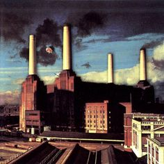 animals mr pink floyd mark portillo