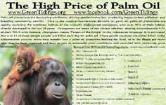 Say no to Palm Oil. Save the natural habitats of the orangutans and elephants.