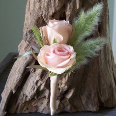 Star Blush spray rose, green leucadrendron, and bunny tail grass boutonniere (Floral Verde) Prom Flowers, Pretty Flowers, Wedding Flowers, Beautiful Bouquets, Rose Wedding, Purple Wedding, Spring Wedding, Dream Wedding, Rose Boutonniere