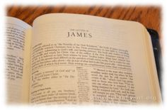The Epistles of Paul and You > Free Bible Study Guides