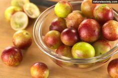 O Poder Medicinal do camu-camu - fruta poderosa - Aliados da Saúde