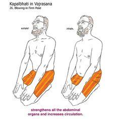 bikram yoga postures illustrated with real bodies Bikram Yoga Postures, Bikram Yoga Benefits, Free Yoga Videos, Hot Poses, Real Bodies, Hot Yoga, Yoga Meditation, Namaste, Workout