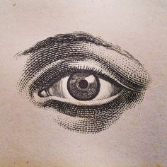 A look inside some of John Derian's favorite antique books.