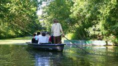 """Kanal-Urlaub im Marais Poitevin: Per Boot durch Frankreichs """"grünes Venedig"""" - n-tv.de"""