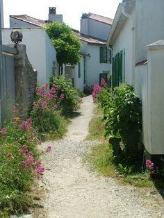 Les petites ruelles de l'île (Ars-en-Ré)