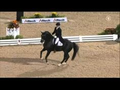 Totilas and Edward Gal in their Grand Prix Freestyle