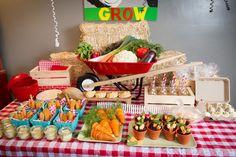 fiesta temática de la granja | balas de paja, no faltan los elementos típicos de una granja, como la ...