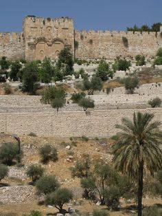 Jerusalem, Israel:  Eastern Gate, sealed by Arabs thinking they'll keep Messiah from returning here.