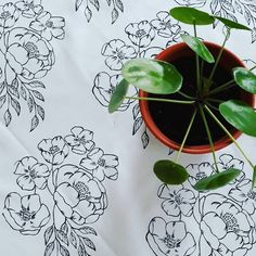 New print #tisk #sitotisk #ubrus #prostirani #tablecloth #print #printing #printoftheday #imakethings #craftymomma #creativedaily #handmade… New Print, Plant Leaves, My Arts, Printing, Crafty, Creative, Plants, Handmade, Instagram