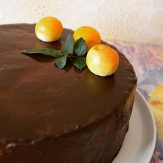 """Торт для любимой бабули Песочный корж, шоколадный бисквит, абрикосовый конфитюр, желе с персиками и абрикосами, сырно-сливочный мусс и шоколадная глазурь По рецепту торт """"Морела"""" от @miuda21 #торт #фруктыягоды #на_сладкое #вкусно #десерт #cake #food"""