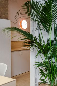Mad Mouse co-working space captures the spirit of LZF - LZF Lamps Co Working, Working Area, Timber Beams, Corporate Style, Coworking Space, Old Stone, Ceiling Beams, Architecture Photo, Interior Design Studio