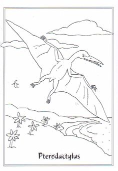 coloring page dinosaurs 2 pterodactylus