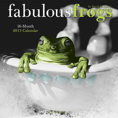 """Fabulous Frogs Wall Calendar: A former photojournalist, David McEnery now captures the hearts of viewers around the world with photographs of his animal friends. The famous """"cartoonist with a camera"""" focuses on the wondrous world of amphibians in this collection — Fabulous Frogs.  $13.99  http://calendars.com/Reptiles-and-Frogs/Fabulous-Frogs-2013-Wall-Calendar/prod201300002733/?categoryId=cat420002=cat420002#"""