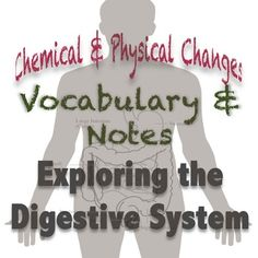 Digestive System Vocabulary & Notes with a focus on Chemical & Physical Changes. This makes a teacher's life much easier with relevant and interactive vocabulary and notes. I love it when life is made easier! :)