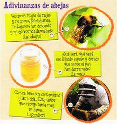 1.GRANJA APÍCOLA  Preguntas que despiertan curiosidad:   ¿Dé dónde procede la miel?  ¿Quién la fabrica?  ¿Qué tareas son necesarias para su ...