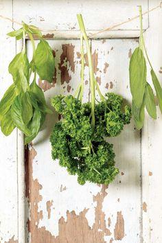 basil, parsley & sage