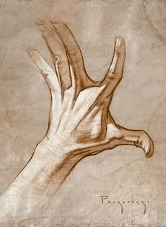 How to Draw Hands – Muscle Anatomy of the Hand - Zeichnen lernen - Drawing from part one of how to draw hands. Hand Drawing Reference, Drawing Hands, Life Drawing, Figure Drawing, Painting & Drawing, Art Reference, Drawings Of Hands, Matte Painting, Sketches Of Hands
