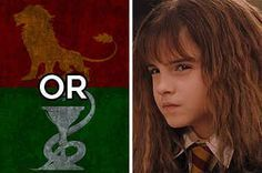 I got 45% Slytherin and 55% Gryffindor. What % Gryffindor And What % Slytherin Are You?