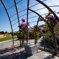 Flashback: Torreblanca Park / Carme Pinos (3)