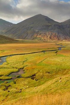 The Trollaskagi peninsula is a lesser known gem of Iceland. The coastal and inland scenery are simply stunning. Places To Travel, Places To Visit, Landscape Photography, Travel Photography, North Iceland, Guide To Iceland, Lofoten, Iceland Travel, Berg