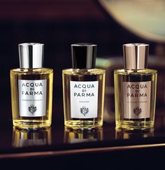 Since Acqua di Parma has cultivated its unique style by creating a collection of iconic perfumes and colognes symbolizing the Italian luxury Italian Logo, Villas In Italy, Smell Good, Cologne, Bath And Body, Perfume Bottles, Fragrance, Cosmetics, Mens Fashion