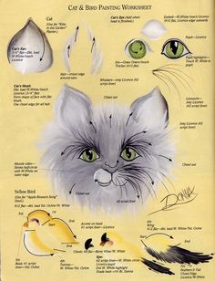 Cat & Bird Painting Worksheet