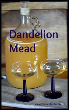 #Dandelion #mead has immune boosting qualities.  I make a double batch every spring while the dandelions are blooming, and then set it aside for winter.