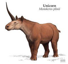 Pliny´s Unicorn by Tiina Aumala Alien Creatures, Fantasy Creatures, Mythical Creatures, Prehistoric Wildlife, Prehistoric Creatures, Beast Creature, Fantasy Beasts, Creature Concept Art, Extinct Animals