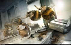 Shaved Bumblebee by Till Nowak | 3D | CGSociety