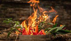 Chili paprika erőssége – gondoltad volna, hogy a chili paprikák erőssége mérhető? Tudj meg róla minél többet! Információk, érdekességek! Chili, Outdoor Decor, Plants, Chile, Plant, Chilis, Planets