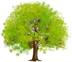 Large green tree clipart tree art trees and green Clipart Gallery, Cartoon Trees, Tree Clipart, Garden Drawing, Tree Logos, Autumn Nature, Watercolor Trees, Elements Of Art, Green Trees