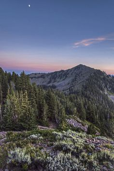 6 Days in Utah's Wasatch Mountains