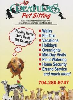 Pet Sitting and Dog Walking in Huntersville, NC area Pet Sitting Business, Dog Walking Business, Dog Walking Services, Pet Sitting Services, Pet Services, Dog Grooming Shop, Dog Grooming Business, Dog Walking Flyer, Critter Sitters