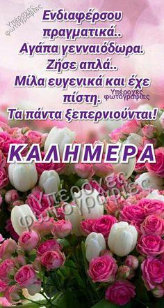 Good Night, Quotes, Nighty Night, Good Night Wishes