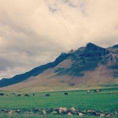 Snæfellsnes, Iceland #HipmunkBL