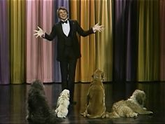 A Young Steve Martin Performs Stand Up Comedy for Dogs on 'The Tonight Show' in 1973 Black Stand Up Comedians, Jimmy Kimmel Jimmy Fallon, Maggie Cheung, Trailer Park Boys, Johnny Carson, The Lone Ranger, Steve Martin, Card Tricks, Old Shows